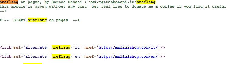Matteo Bononi hreflang