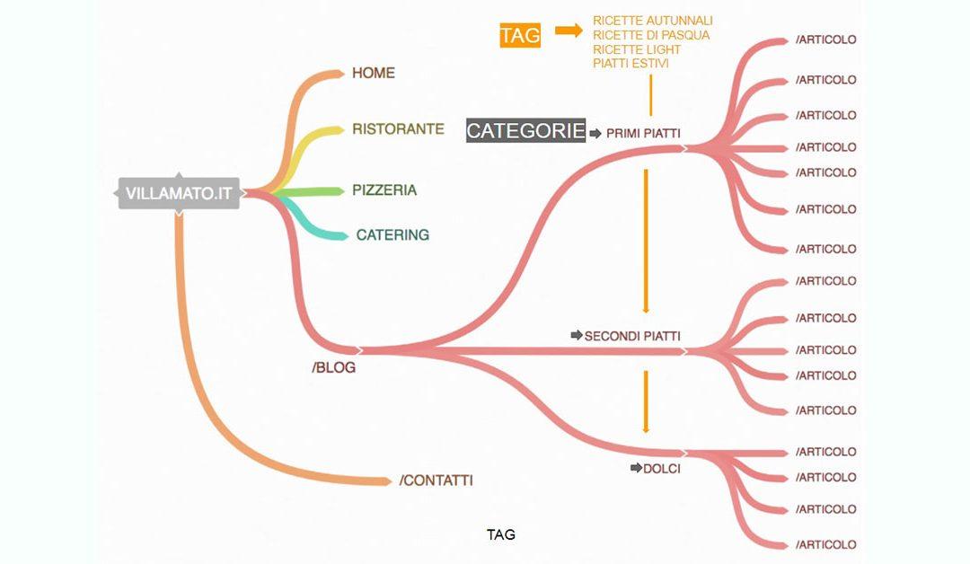 Tassonomie orizzontali e verticali: scopriamo da vicino categorie e tag